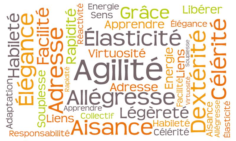 Nuages de mots Agilité-Accueil